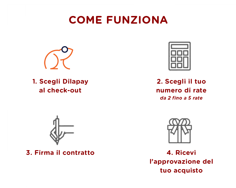 dilapay-funziona-ability-2.png